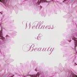 Ομορφιά αγγελιών Wellness - θέμα με τα ρόδινα λουλούδια Στοκ Εικόνα