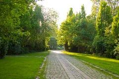 Ομορφιά νεκροταφείων Στοκ εικόνα με δικαίωμα ελεύθερης χρήσης