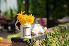 Ομορφιά λουλουδιών Στοκ Εικόνες