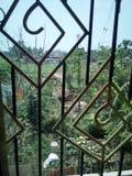 Ομορφιά που συλλαμβάνεται φυσική από με από το παράθυρο δωματίων μου στοκ φωτογραφία με δικαίωμα ελεύθερης χρήσης