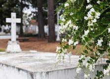 Ομορφιά σε ένα νεκροταφείο Στοκ φωτογραφία με δικαίωμα ελεύθερης χρήσης