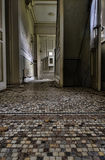 Ομορφιά της εγκατάλειψης Στοκ Εικόνες
