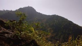 Ομορφιά της φύσης, Σρι Λάνκα στοκ εικόνες
