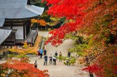 Ομορφιά του φθινοπώρου στο Takao, Κιότο, Ιαπωνία Στοκ Εικόνες
