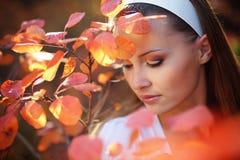 ομορφιά φθινοπώρου Στοκ εικόνα με δικαίωμα ελεύθερης χρήσης