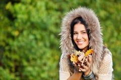Ομορφιά φθινοπώρου Στοκ Φωτογραφία