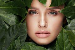 ομορφιά φυσική Όμορφο πρόσωπο γυναικών στα πράσινα φύλλα Στοκ Φωτογραφία