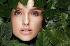 ομορφιά φυσική Όμορφο πρόσωπο γυναικών στα πράσινα φύλλα Στοκ εικόνες με δικαίωμα ελεύθερης χρήσης