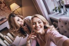 Ομορφιές Flirty Αυτοπροσωπογραφία τοπ άποψης του ελκυστικού νέου wom Στοκ φωτογραφίες με δικαίωμα ελεύθερης χρήσης