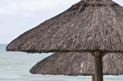 ομπρέλα θαλάσσης Στοκ Φωτογραφία