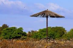 ομπρέλα ξύλινη Στοκ Φωτογραφίες