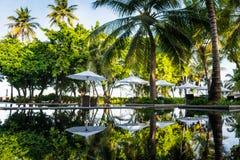 Ομπρέλες παραλιών κοντά στην τροπική πισίνα στις Μαλδίβες Στοκ Φωτογραφία