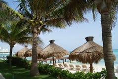 Ομπρέλες παραλιών Thatched & δέντρα καρύδων στην παραλία Cancun, Μεξικό Στοκ εικόνες με δικαίωμα ελεύθερης χρήσης