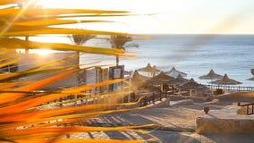 Ομπρέλες στην παραλία Ερυθρά Θάλασσα απόθεμα βίντεο