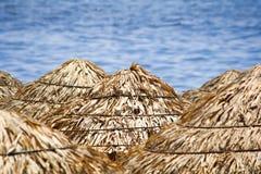 Ομπρέλες Thatched Στοκ Εικόνες