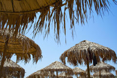 Ομπρέλες Thatched Στοκ εικόνα με δικαίωμα ελεύθερης χρήσης