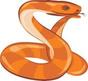 Ονειρεμένος φίδι Στοκ Φωτογραφία