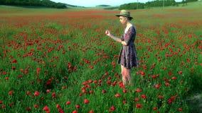 Ονειροπόλος γυναίκα στο κόκκινο φόρεμα και καπέλο στον όμορφο τομέα παπαρουνών χορταριών ανθίζοντας απόθεμα βίντεο