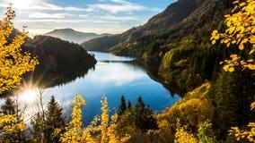 Ονειροπόλο και ζωηρόχρωμο φθινόπωρο στο Μπέργκεν, Hordaland, Νορβηγία στοκ φωτογραφίες με δικαίωμα ελεύθερης χρήσης