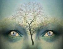 Ονειροπόλο μυαλό Στοκ εικόνες με δικαίωμα ελεύθερης χρήσης