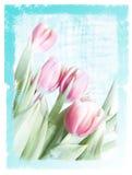 ονειροπόλο floral έγγραφο Στοκ φωτογραφία με δικαίωμα ελεύθερης χρήσης