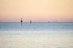 Ονειροπόλα σκάφος και seagull μορίων ηλιοβασιλέματος Στοκ Εικόνες