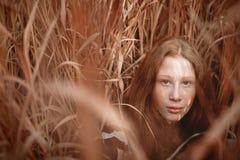 Ονειροπόλο πορτρέτο του κοριτσιού τρίχας πιπεροριζών στον τομέα Στοκ Εικόνες