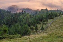 Ονειροπόλο τοπίο της Misty Η βαθιά misty κοιλάδα το φθινόπωρο Carpathians σταθμεύει το σύνολο των βαριών σύννεφων της πυκνής ομίχ Στοκ φωτογραφίες με δικαίωμα ελεύθερης χρήσης