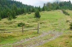 Ονειροπόλο τοπίο της Misty Η βαθιά misty κοιλάδα το φθινόπωρο Carpathians σταθμεύει το σύνολο των βαριών σύννεφων της πυκνής ομίχ Στοκ Φωτογραφίες