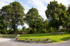 δονούμενο περπάτημα θερινού χρόνου μονοπατιών πάρκων χρωμάτων Στοκ Εικόνες