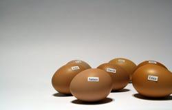ονόματα αυγών Στοκ Φωτογραφία