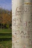 Ονόματα, ημερομηνίες και μηνύματα χαράξεων στον κορμό δέντρων Στοκ φωτογραφία με δικαίωμα ελεύθερης χρήσης