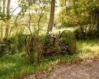 Οξυδωμένα αγροτικά μηχανήματα και ζωικό κρανίο Στοκ εικόνα με δικαίωμα ελεύθερης χρήσης