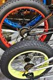Οπίσθια ρόδα με τη μεγάλη ρόδα με το ποδήλατο Στοκ Φωτογραφία