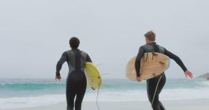 Οπισθοσκόπος δύο αρσενικών surfers που τρέχουν μαζί με την ιστιοσανίδα στην παραλία 4k απόθεμα βίντεο