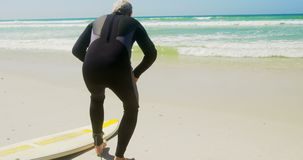 Οπισθοσκόπος του δραστήριου ανώτερου καυκάσιου αρσενικού surfer που χαλαρώνει στην παραλία στην ηλιοφάνεια 4k φιλμ μικρού μήκους