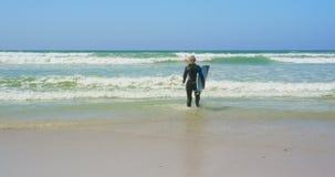 Οπισθοσκόπος του δραστήριου ανώτερου καυκάσιου θηλυκού surfer που τρέχει στη θάλασσα στην ηλιοφάνεια 4k απόθεμα βίντεο