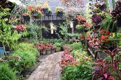 Οποιαδήποτε manny λουλούδια στον κήπο Στοκ Εικόνες
