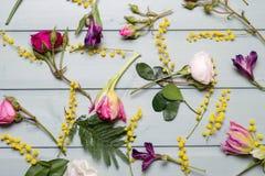 οποιαδήποτε χρώματα υπάρχουν λουλούδια τέσσερα έκδοση προτύπων Στοκ φωτογραφία με δικαίωμα ελεύθερης χρήσης