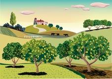 Οπωρώνας με τα δέντρα αχλαδιών διανυσματική απεικόνιση