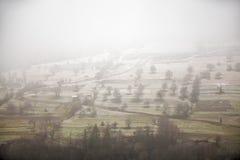 Οπωρώνας της Apple στα τέλη του φθινοπώρου Πρώτο χιόνι που καθορίζεται Στοκ Φωτογραφία