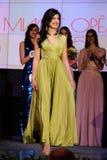 Ορέλ, Ρωσία - 20 Δεκεμβρίου 2015: Διαγωνισμός ομορφιάς της Δεσποινίσς Orel 2015 Στοκ Εικόνες