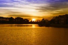 Ορίζοντας σκιαγραφιών φοινίκων σύννεφων ηλιοβασιλέματος Στοκ εικόνα με δικαίωμα ελεύθερης χρήσης