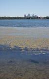 Ορίζοντας της Μινεάπολη πέρα από τη λίμνη Calhoun Στοκ εικόνα με δικαίωμα ελεύθερης χρήσης