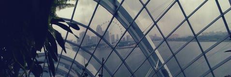 Ορίζοντας της Σιγκαπούρης μέσω του θόλου στοκ εικόνες