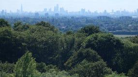 Ορίζοντας του ανατολικού Λονδίνου που βλέπει επάνω από τα δέντρα στοκ εικόνα