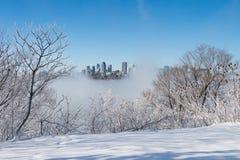 Ορίζοντας του Μόντρεαλ και ποταμός του ST Lawrence το χειμώνα Στοκ Εικόνες