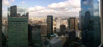 Ορίζοντας του Τόκιο, Ιαπωνία με τα κτήρια που απεικονίζουν στις προσόψεις γυαλιού των ουρανοξυστών Στοκ Εικόνα