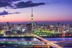 Ορίζοντας του Τόκιο, Ιαπωνία Στοκ εικόνα με δικαίωμα ελεύθερης χρήσης