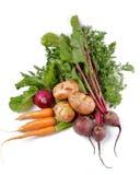 οργανικά ακατέργαστα λαχανικά ρύθμισης Στοκ φωτογραφία με δικαίωμα ελεύθερης χρήσης